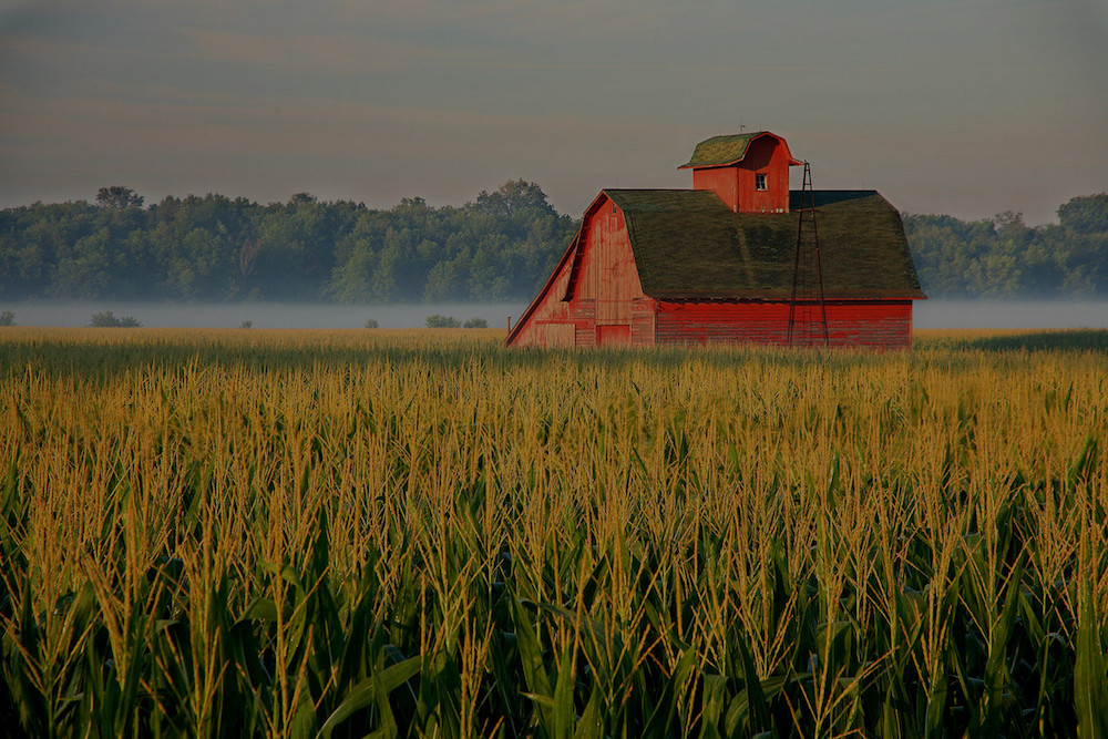 farm and crop insurance Montgomery TX